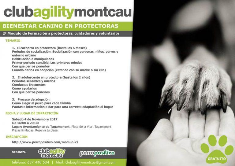 MODULE 2: Entraînement gratuit au bien-être canin chez les protecteurs