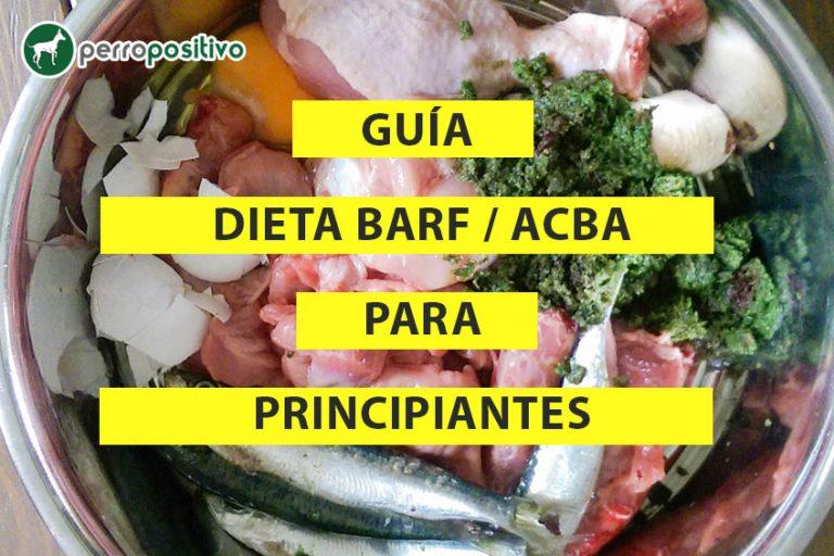 BARF / ACBA Guide de régime pour débutants