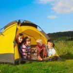 Aspects juridiques des camps avec chiens et enfants