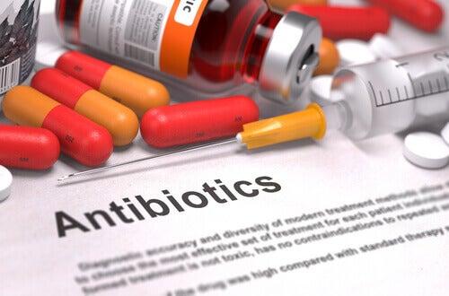 La résistance aux antimicrobiens continue de saper les progrès de la médecine vétérinaire