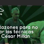 Cesar Millán 5 raisons de ne pas éduquer votre chien avec ses conseils