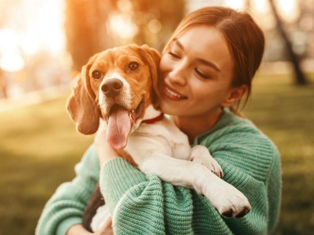 12 questions et réponses sur les soins des chiens