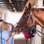 Qu'est-ce que la rhinopneumonie équine?